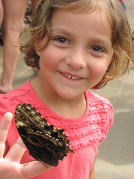 http://www.cincinnatiparks.com/butterflyshow/